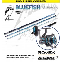 Assassin Rod Reel Combo: Bluefish 14ft with BigBoss III 8000 was R3699 now R3299